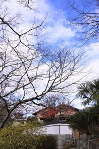 kyoto-30.jpg