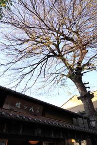 kyoto-50.jpg