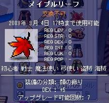 20080828 (3)