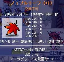 20080828 (5)