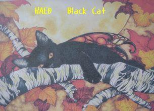 09-haed-blackcat.jpg