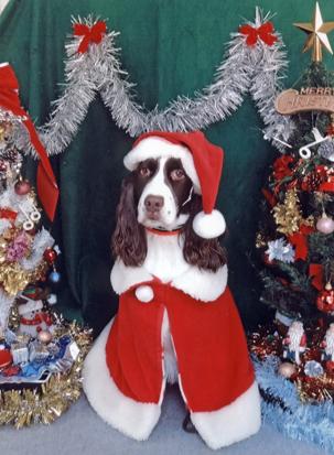 2011クリスマス保育園にて