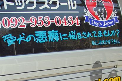 IMGP3864-20110221-1312-1.jpg