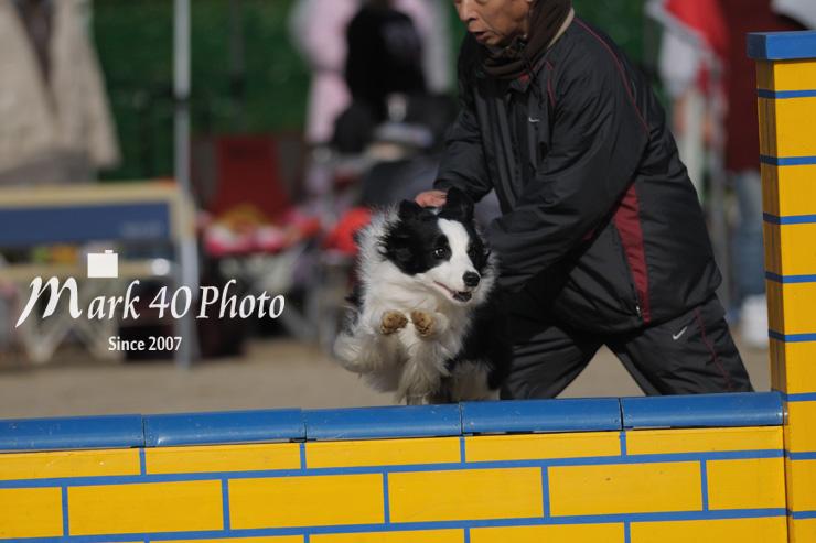 AvF4.5 Tv1/3200 ISO200