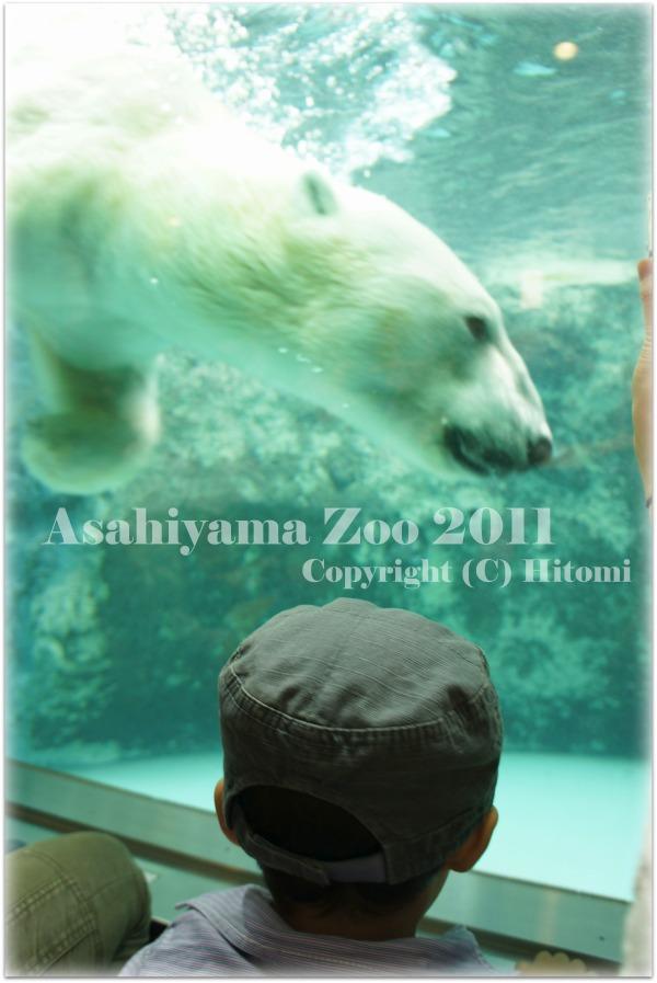 旭山動物園☆