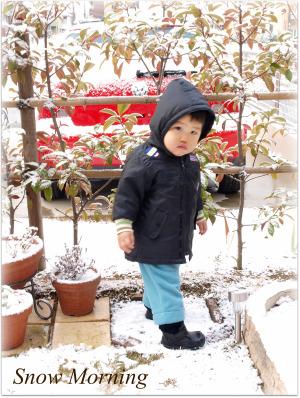 雪ふる朝♪