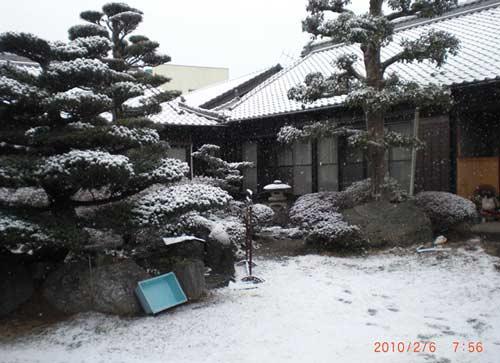 2010.02.06.また雪の朝