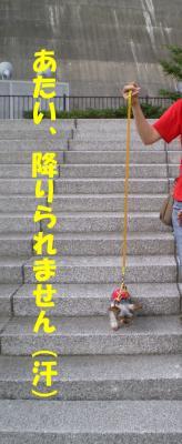 階段にて。。。