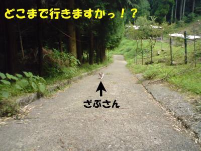 遠き道のり1