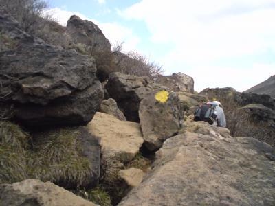 岩、多すぎ。。。