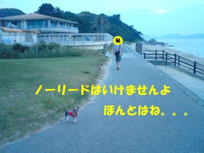 休暇村横の海!