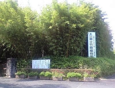 fujichikurui_200906_01.jpg