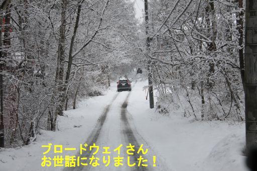 20100301-17.jpg
