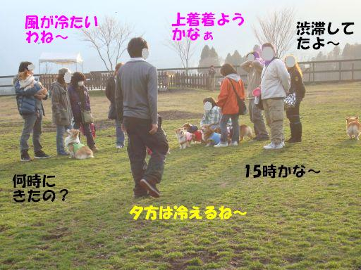 20100312-12.jpg