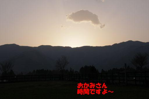 20100312-16.jpg