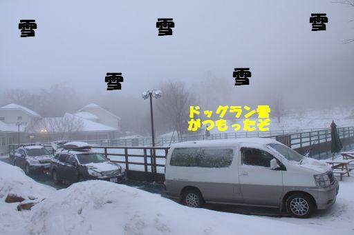 20100316-11.jpg