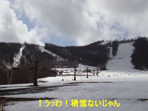 20100316-8.jpg