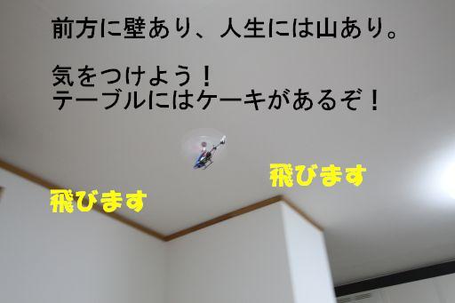 20100318-10.jpg
