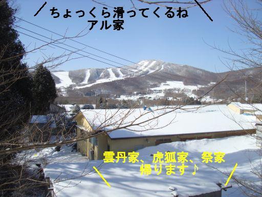 20100318-13.jpg