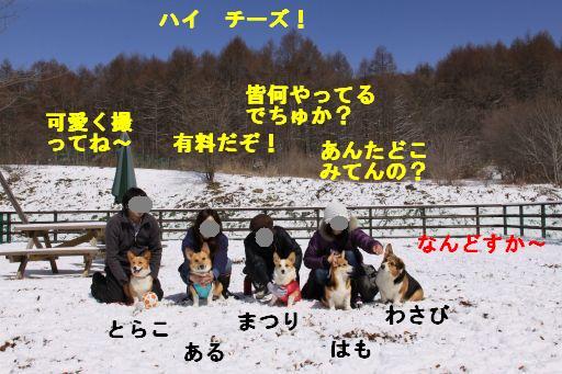 20100318-31.jpg