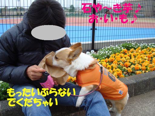20100324-20.jpg