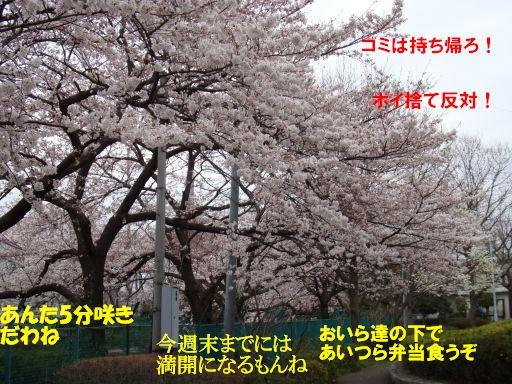 20100324-40.jpg