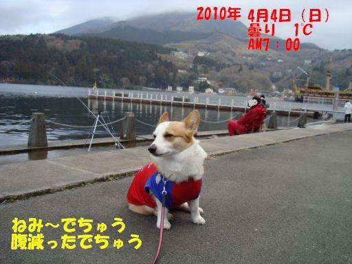 201004011-17.jpg