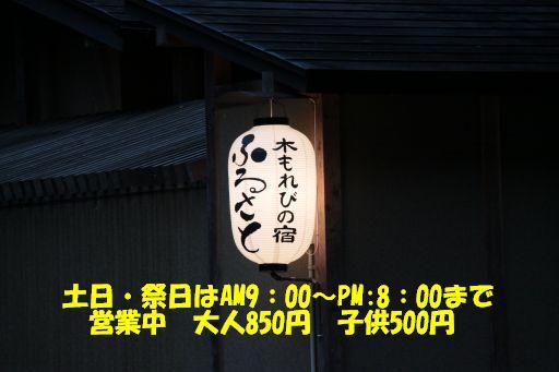 20100403-10.jpg