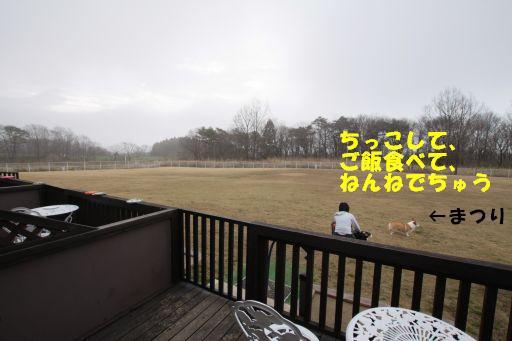 20100412-2.jpg
