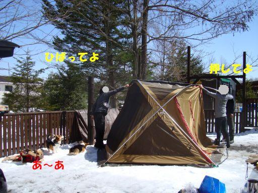20100417-8.jpg