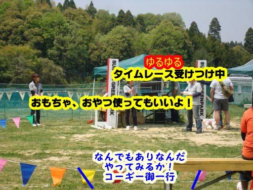 20100501-200.jpg