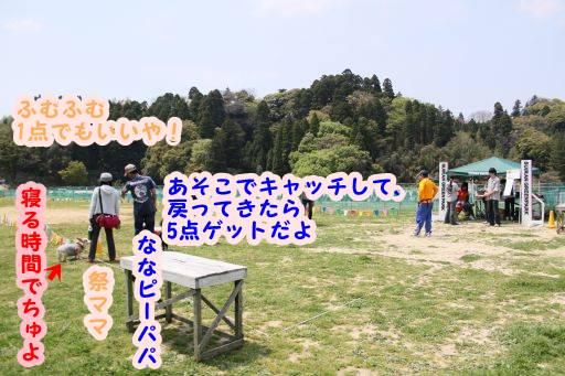 20100501-26.jpg