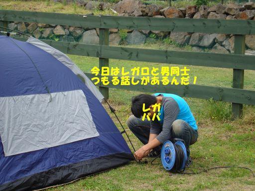 20100510-15.jpg
