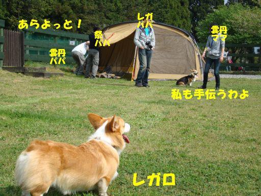 20100510-30.jpg