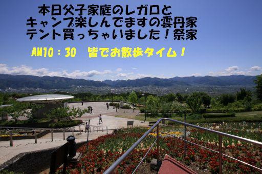 20100510-4.jpg