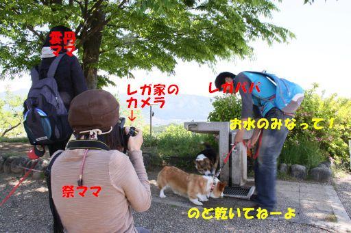 20100510-7.jpg