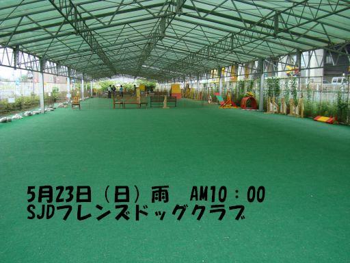 20100516-2.jpg