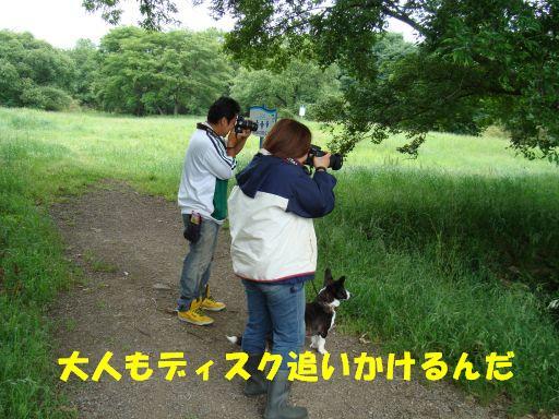 20100531-30.jpg