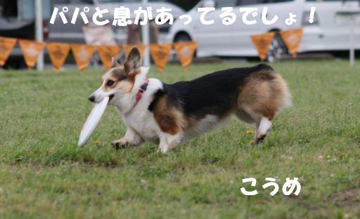 20100601-6.jpg