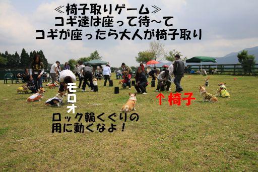 20100606-15.jpg