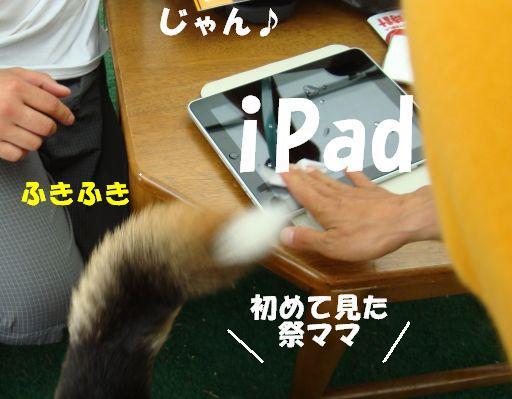 20100617-14.jpg