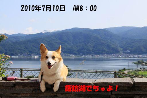 20100707-1.jpg