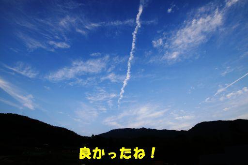 20100707-11.jpg