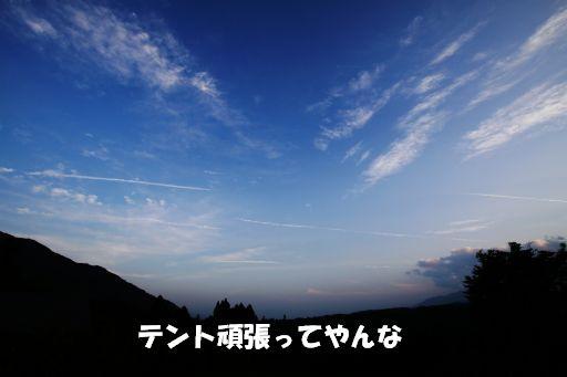 20100707-7.jpg
