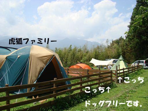 20100707-9.jpg
