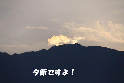 20100709-10.jpg