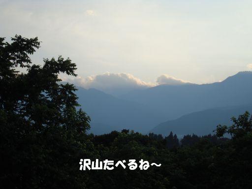 20100709-8.jpg