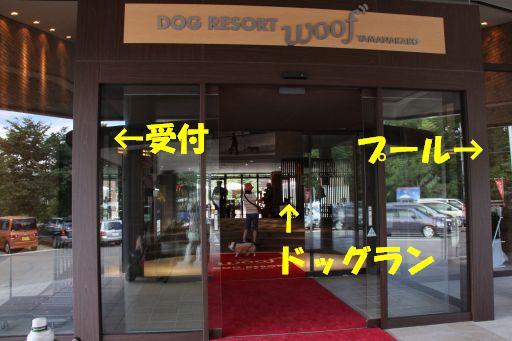 20100713-10.jpg