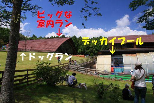20100713-18.jpg