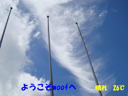 20100713-9.jpg